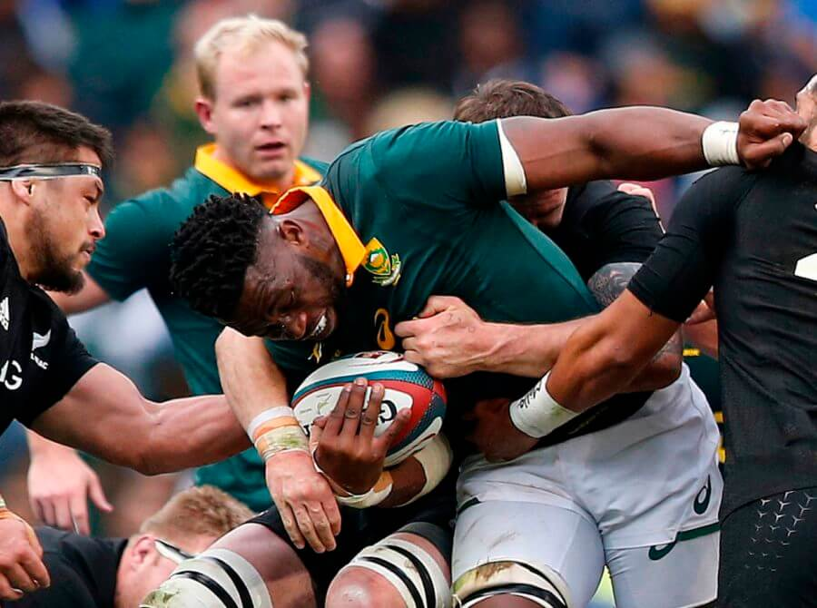 The Springboks Will Beat All Blacks When They Meet This Year
